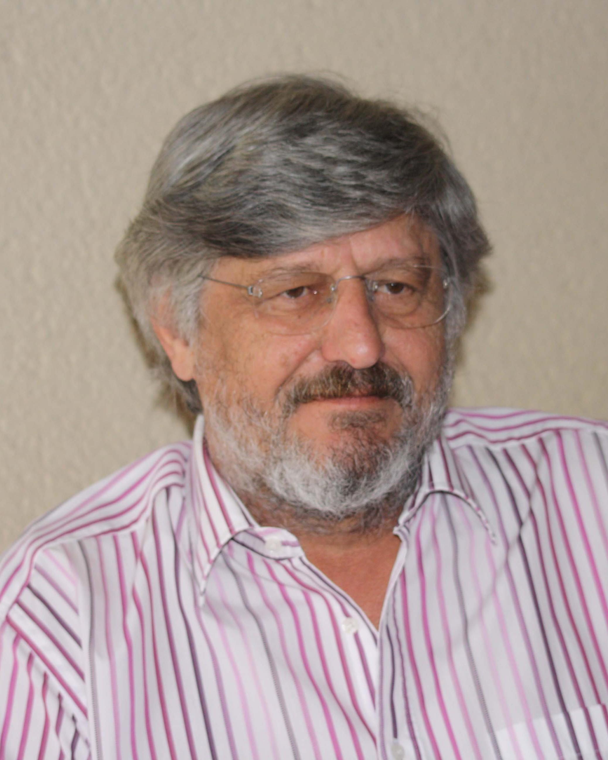 Prof. Dr. Bruno Sesboué